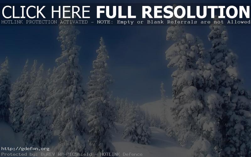 Обои Зимняя пора фото картики заставки