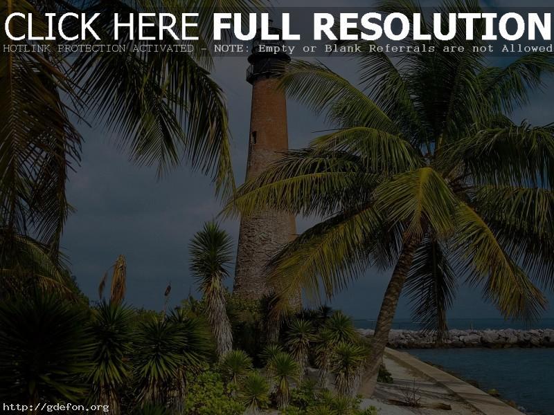 Обои Флорида, маяк, пальмы, берег фото картики заставки