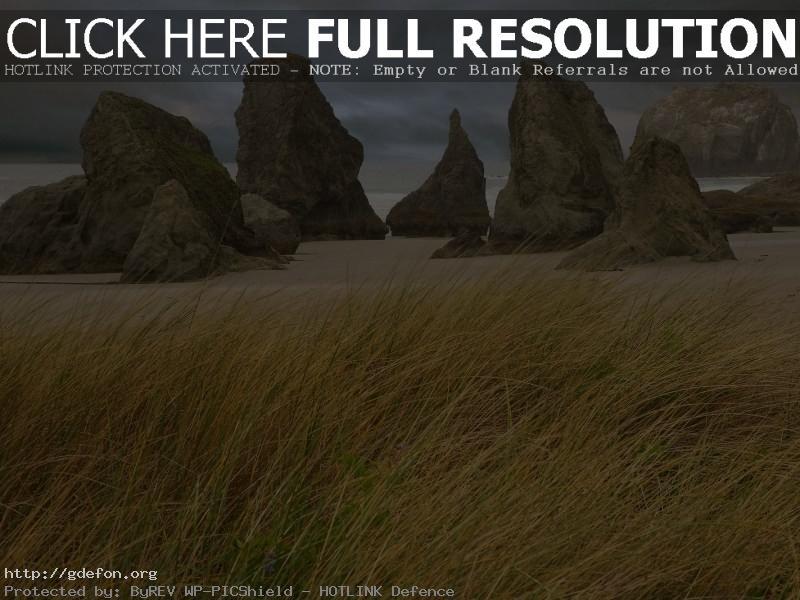 Обои Трава, скалы, берег фото картики заставки