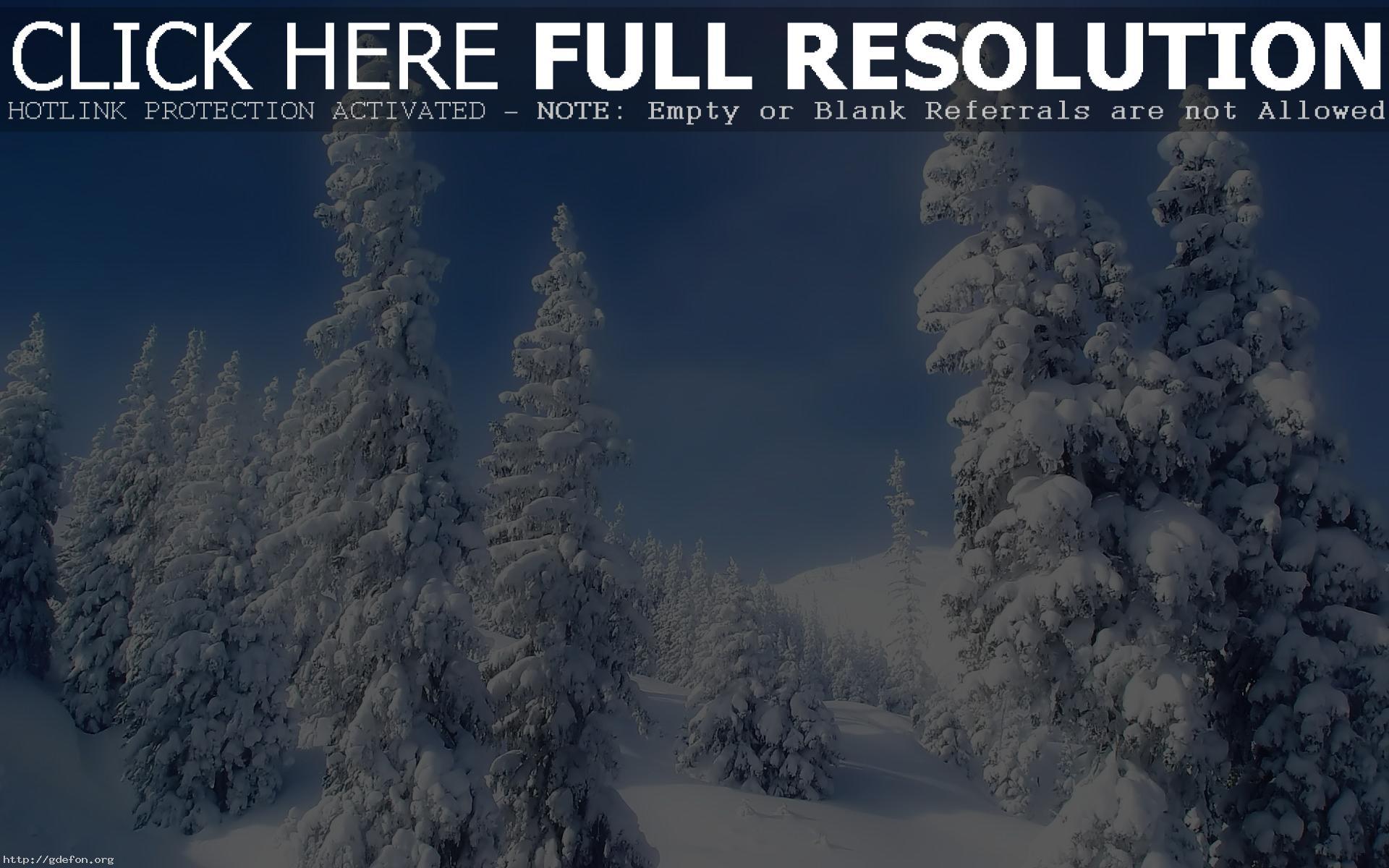 обои зима снежная на рабочий стол № 640791 загрузить