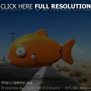 Рыбка из Ранго