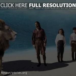 Несмотря на цунами мы идем за львом