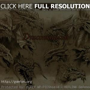 Draconomicon — The Book of Dragons