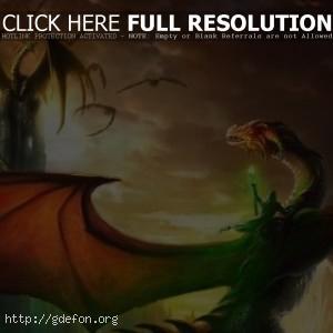 Драконы и маг