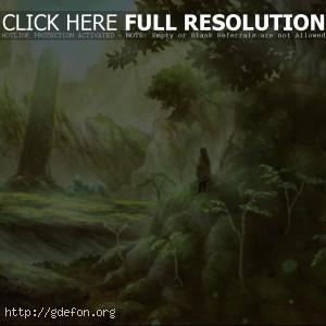 Человек, лес, деревья, свет, рисунок