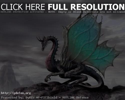 Обои Волшебный сказочный дракон фото картики заставки