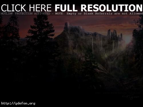 Обои Чаща леса фото картики заставки