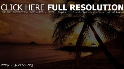 Обои Закат на берегу океана фото картики заставки