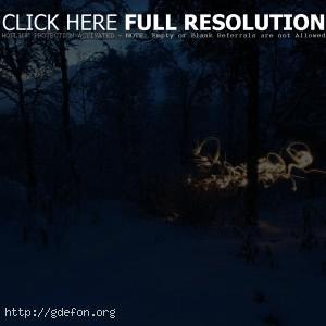 Снег, пейзаж, холод