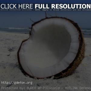 кокос, песок, пляж