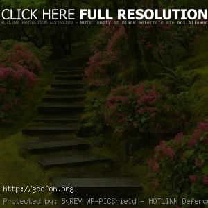 Японский сад, лестница, цветы