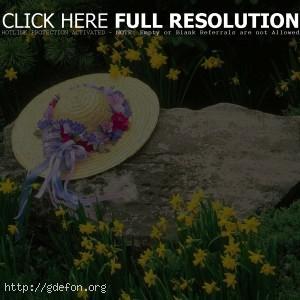 шляпа, камень, цветы
