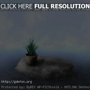 Камень, вода, облака, растение, горшок