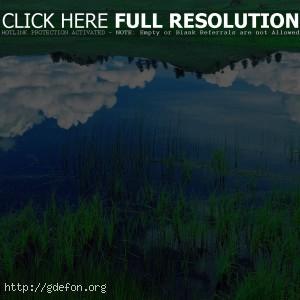 Облака, отражение, озеро, трава