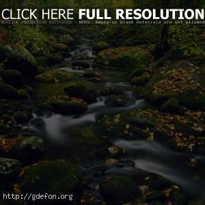 Ручей, камни, поток