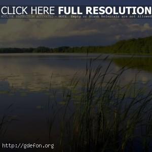 Пейзаж, река, природа, небо, лес