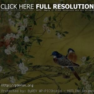 Весна, птицы, ветви, цветы