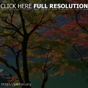 Япония, осень, лодка