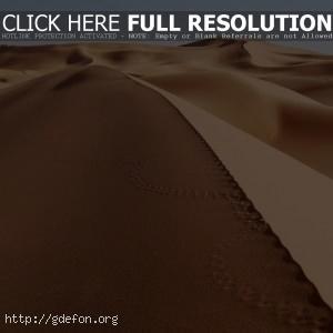 Пустыня, песок, следы
