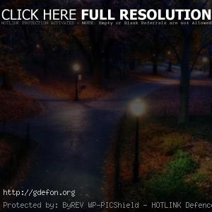 Ночь, парк, дороги
