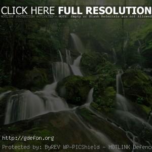 Водопад, камни, деревья, лес