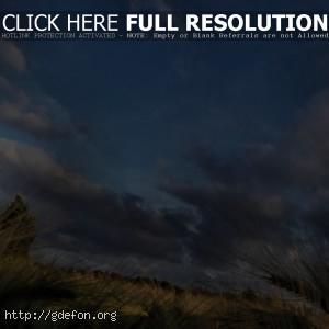 Небо, поле, облака