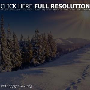Лес, зима, снег, следы, горы, небо, солнце