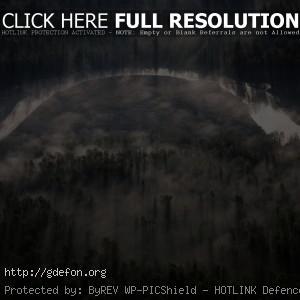 река, деревья, туман