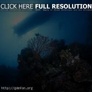дно, кораллы, аквалангист, лодка, свет