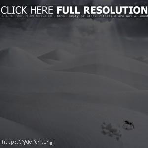 Пустыня, фантазия