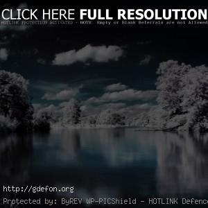 Деревья, снег, вода, облака