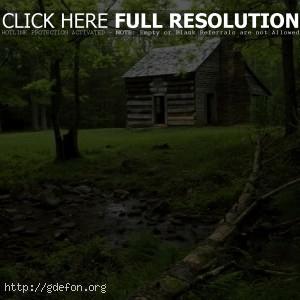 Дом посреди леса