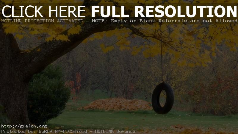 Обои Осень, колесо, листья, поляна фото картики заставки