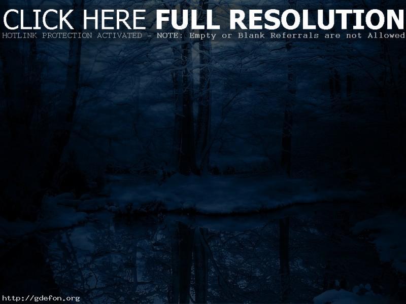 Обои Зима, деревья, снег,  холод фото картики заставки