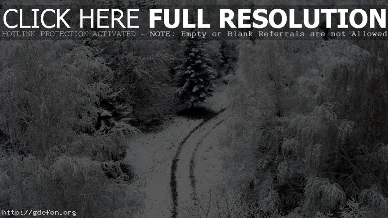 Обои Зима, дорога, снег, деревья фото картики заставки