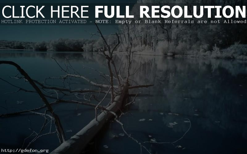 Обои Зима, ночь, озеро, холод фото картики заставки