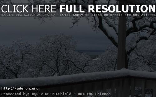 Обои Красивые зимние, зима фото картики заставки