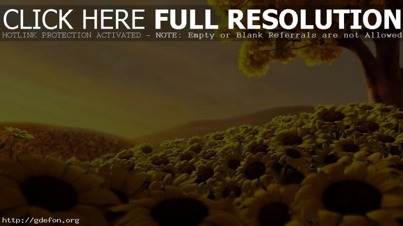 Обои Подсолнухи, поле, дерево, небо фото картики заставки