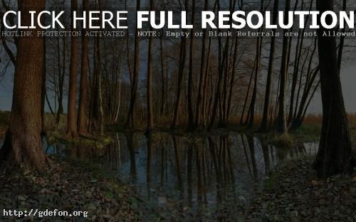 Обои Природа, германия, деревья, вода, осень, листья фото картики заставки