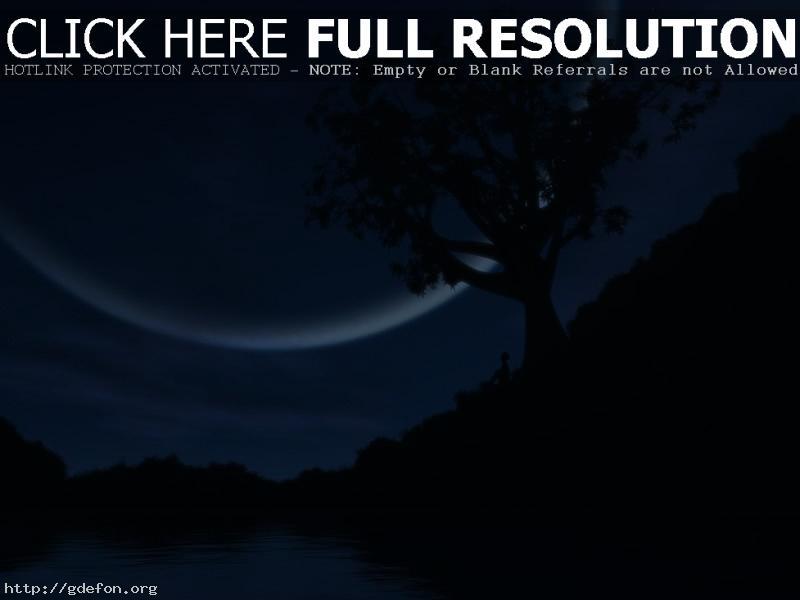Обои Дерево, озеро, луна, человек фото картики заставки