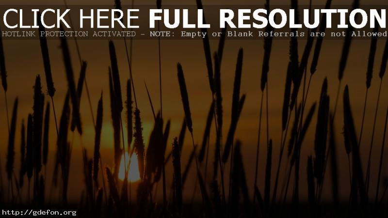 Обои Камиши, закат, солнце фото картики заставки