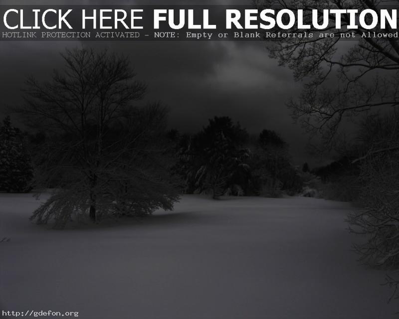 Обои Зима, снег, деревья фото картики заставки