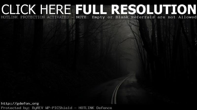 Обои Дорога, лес, деревья, черно-белое фото картики заставки