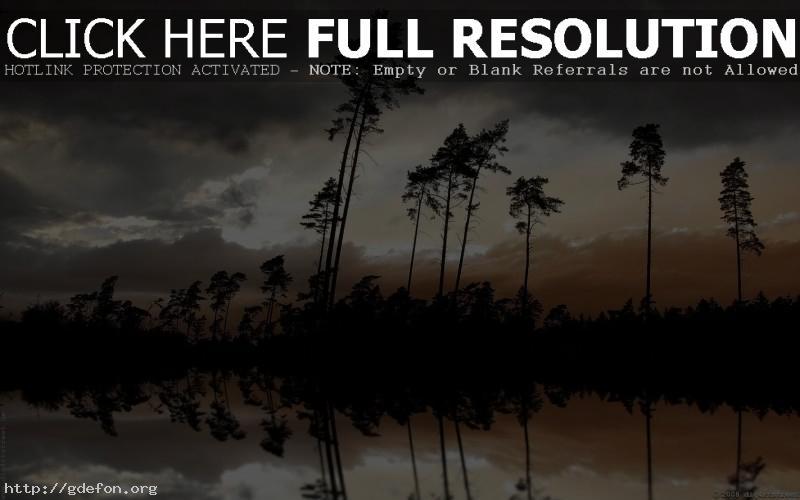 Обои Ночь, река, деревья фото картики заставки