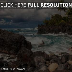 берег, скалы, остров, пальмы