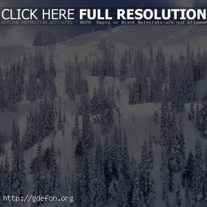 Заснеженный горный спуск