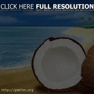 Море, берег, песок, пальмы, кокос
