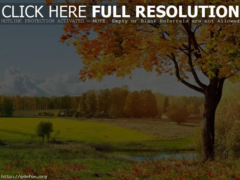 Обои Осенний пейзаж фото картики заставки