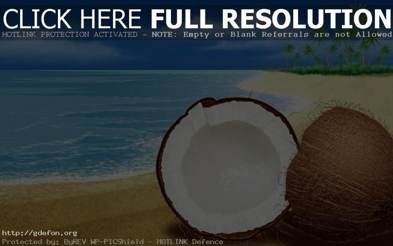 Обои Море, берег, песок, пальмы, кокос фото картики заставки