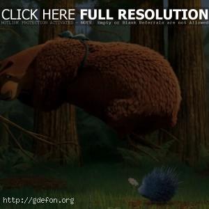Медведь и ежик
